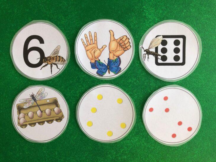 Mengen als Zahl, Finger, Würfel, im Eierkarton, Punkte geordnet und ungeordnet
