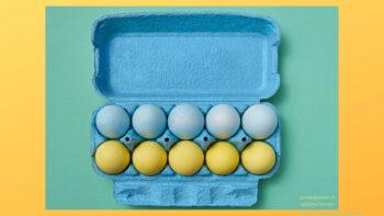 Mathespiele mit Eierkarton und Würfel
